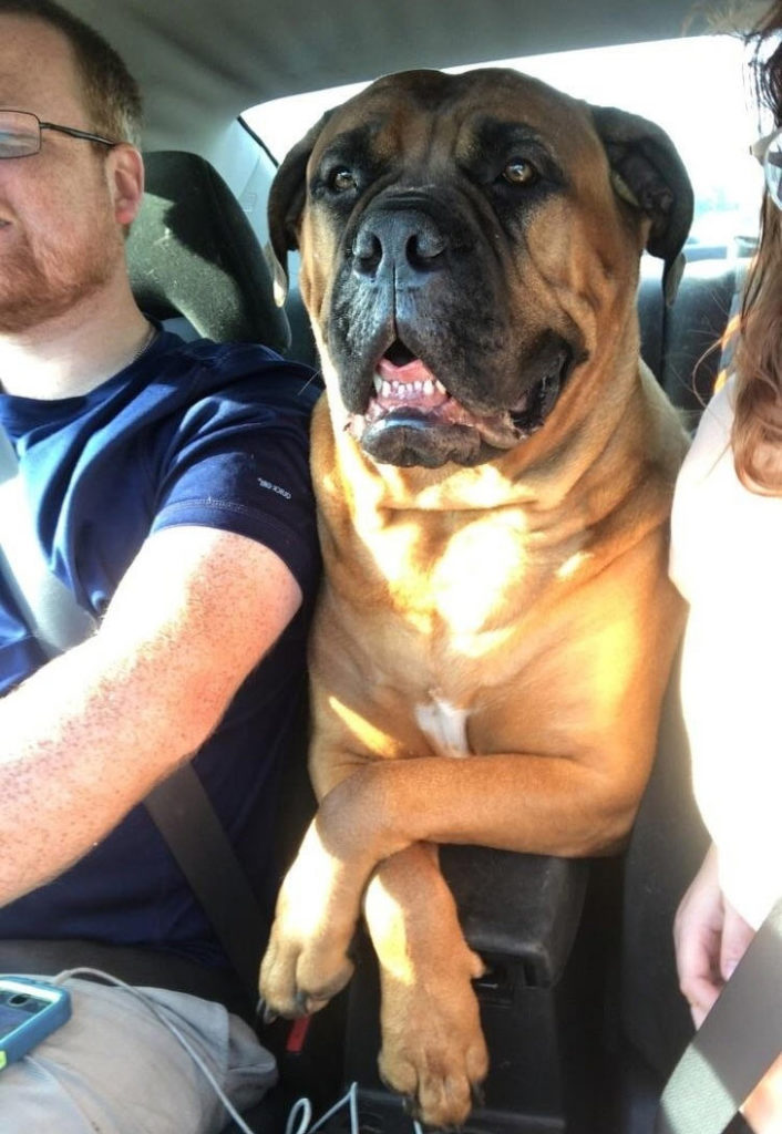 loves to ride with us