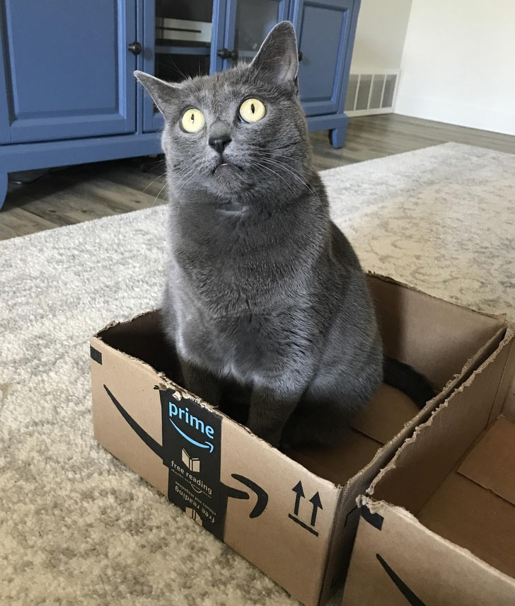 she saw something unusual