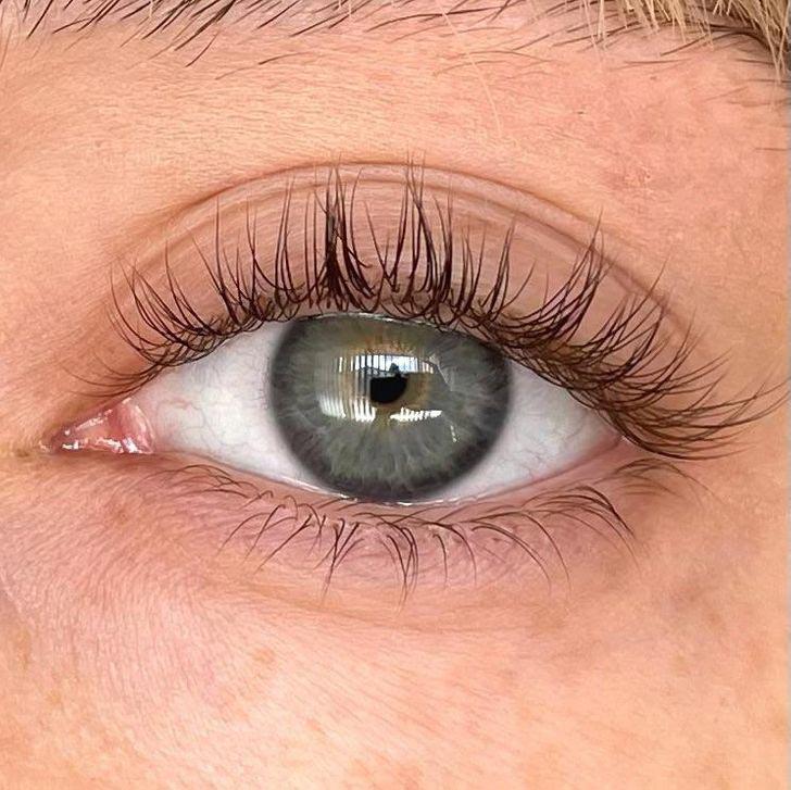 line of eyelashes